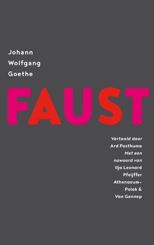 Boek cover Faust, een tragedie van Goethe, Johan Wolfgang (Paperback)