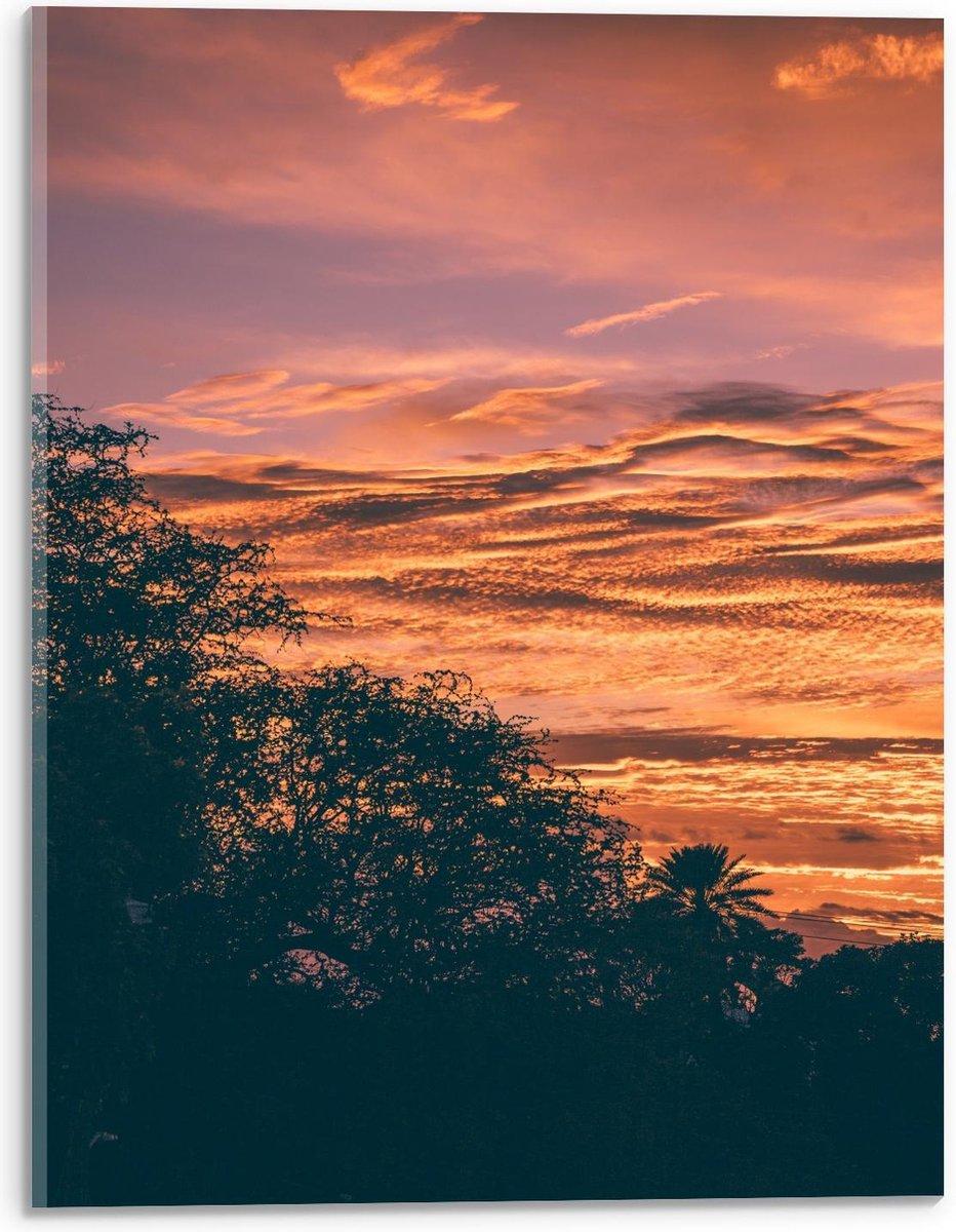 Plexiglas - Boom met Zonsondergang Lucht - 30x40cm Foto op Plexiglas (Met Ophangsysteem)