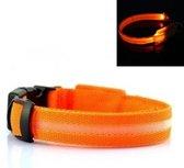 LED Halsband ORANJE XS