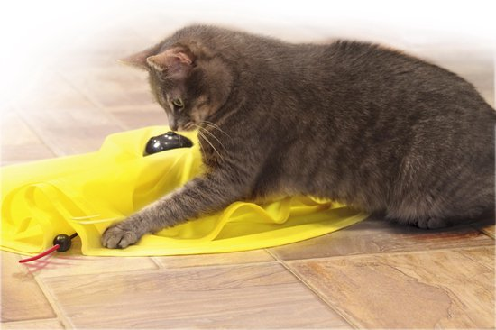 Cat's Miaou® -  Best of TV