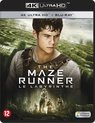 The Maze Runner (4K Ultra HD Blu-ray)