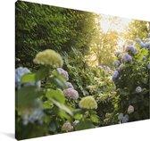 Gele hortensia's in de tuin Canvas 140x90 cm - Foto print op Canvas schilderij (Wanddecoratie woonkamer / slaapkamer)