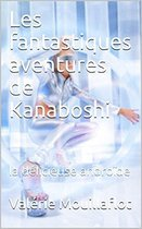 Les fantastiques aventures de Kanaboshi