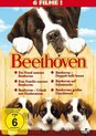 Beethoven 1-6/6 DVD