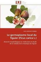 Le Germoplasme Local Du Figuier (Ficus Carica L.)