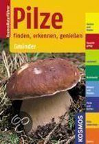 Pilze finden, erkennen, genießen