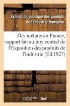 Des metaux en France, rapport fait au jury central de l'Exposition des produits de l'industrie