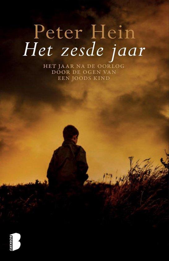 Het zesde jaar - Peter Hein |