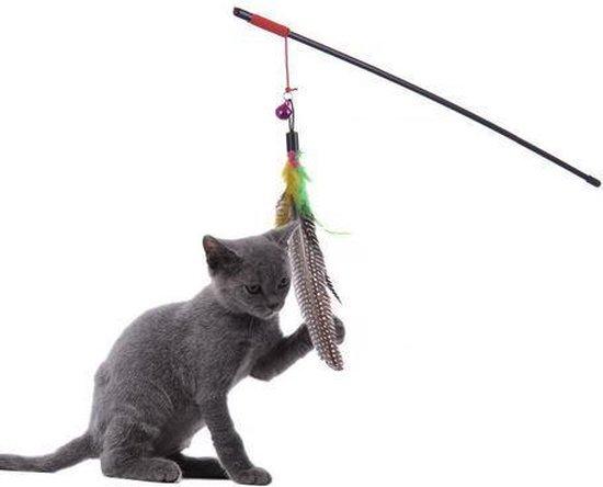 Pippashop Kattenhengel met veertjes en belletje
