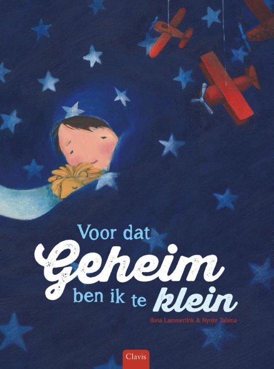 Boek cover Voor dat geheim ben ik te klein van Ilona Lammertink (Hardcover)