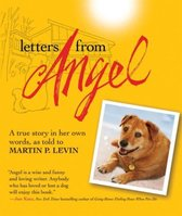 Letters from Angel