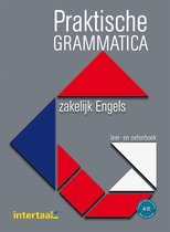 Praktische grammatica zakelijk Engels leer- en oefenboek