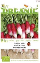 Buzzy® Organic Radijs French Breakfast (BIO)