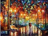 Schilderen op nummer Volwassenen - Regen - Paint by Number Volwassenen – Acrylverf - Canvas - 40x50 cm
