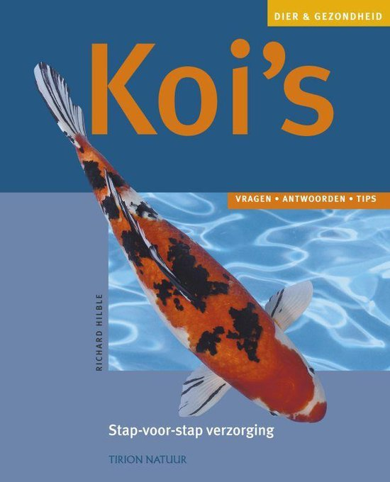 Koi's - Richard Hilble |