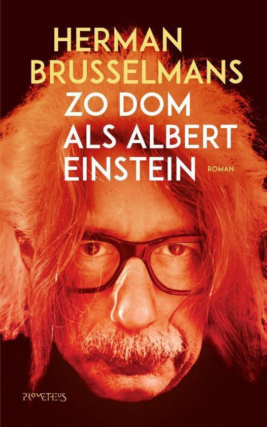 Zo dom als Albert Einstein - Herman Brusselmans | Fthsonline.com