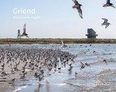 Griend - eiland voor vogels