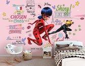 Miraculous Lady Bug en Cat Noir Graffiti Behang – kinderkamer fotobehang Marinette en Adrien – kinderbehang – 368 x 254 cm – roze
