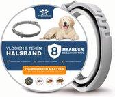 Vlooienband Hond Premium - Grote & Kleine Hond - Halsband - 8 maanden bescherming