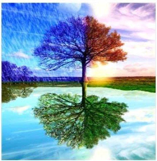 JDBOS ® Diamond Painting volwassenen pakket volledig- 4 seizoenen boom - tree - seasons - zomer - herfst - winter - lente - 35 x 25 cm
