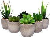 Kunstplanten - Kleine kunstplanten - Kunst vetplanten- vetplantjes - vetplant - Plantjes - Kamerplanten - Fake plants - Plantje - Nep planten - Nep plant - Nep - Vetplant -