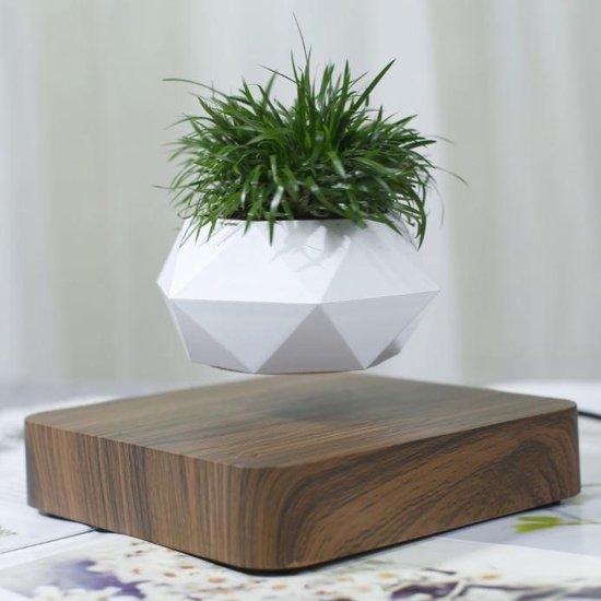 Bol Com Orginele Lisyl Zwevende Plant Walnoten Hout Voor Binnen Bohemian Decoratie