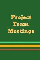 Project Team Meetings