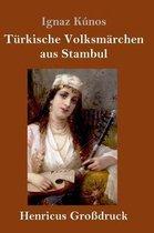Turkische Volksmarchen aus Stambul (Grossdruck)