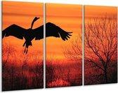 Canvas schilderij Vogels | Zwart, Oranje, Rood | 120x80cm 3Luik