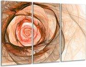 Glasschilderij Roos | Rood, Bruin, Zwart | 120x80cm 3Luik | Foto print op Glas |  F000794