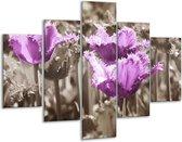 Glasschilderij Tulpen | Paars, Bruin, Grijs | 100x70cm 5Luik | Foto print op Glas |  F002802