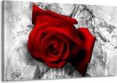 Schilderij | Canvas Schilderij Roos, Bloem | Rood, Zwart, Wit | 140x90cm 1Luik | Foto print op Canvas