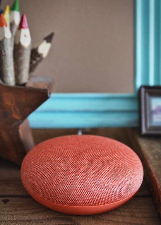 Google Home Mini Coral - Smart Speaker- Geïmporteerde versie