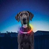 Luxe Lichtgevende Led Honden Halsband Oplaadbaar Night Hawk Multicolor Rood Blauw Groen Licht Hond