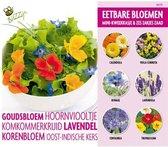 Buzzy® Complete Kweekset Eetbare Bloemen