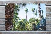 Tropical Trees / Tuinposter / Canvasdoek buiten / Tuindecoratie / 120 x 80