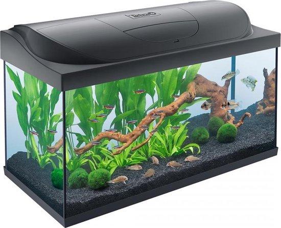 Tetra aquarium Starter Line LED 105 liter (afmeting: 76x37x48 cm)
