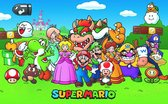 Super Mario Princess Peach Yoshi Bowser Nintendo poster 61x91.5cm.