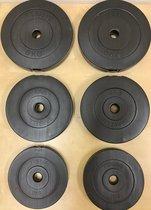 Haltergewichten Halterschijven set - 2x 6kg 4kg 2kg - 6 stuks - 26,5mm