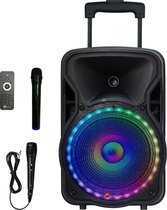 N-GEAR THE FLASH 1205 karaoke party speaker met 2 microfoons