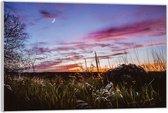 Plexiglas –Grasveld in de Nacht– 40x30 (Wanddecoratie op Plexiglas)