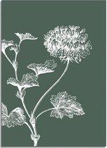DesignClaud Vintage bloem blad poster - Groen - Puur Natuur Botanische poster A2 + Fotolijst wit