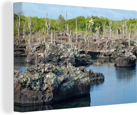 Rotsen en cactussen landschap in de Galapagos eilanden Canvas 140x90 cm - Foto print op Canvas schilderij (Wanddecoratie woonkamer / slaapkamer) / Zee en Strand