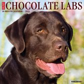 Just Chocolate Labs 2021 Calendar