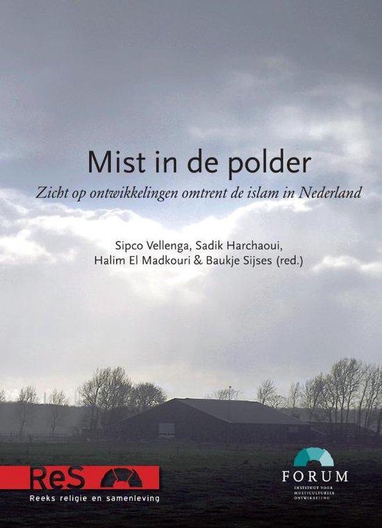 Mist in de polder - Sipco Vellenga  
