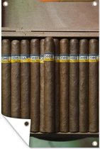 Cubaanse sigaren in een sigarendoosje tuinposter 40x60 cm - klein - Tuindoek / Buitencanvas / Schilderijen voor buiten (tuin decoratie)