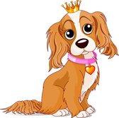 DODO THE DOG: The Doberman Is An Amazing Show
