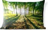 Sierkussen Nationaal park Söderåsen voor buiten - Doorbrekende zon in de bossen van het Nationaal park Söderåsen in Zweden - 60x40 cm - rechthoekig weerbestendig tuinkussen / tuinmeubelkussen van polyester