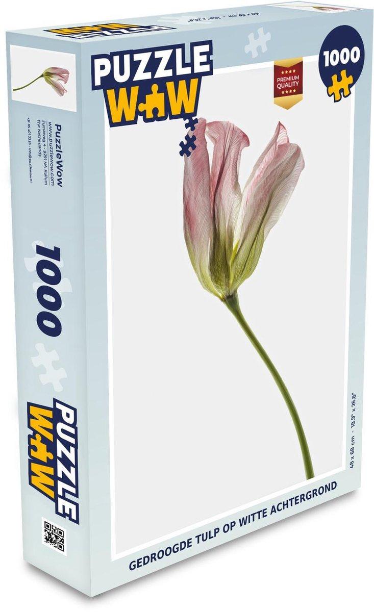 Puzzel 1000 stukjes volwassenen Gedroogde bloemen 1000 stukjes - Gedroogde tulp op witte achtergrond puzzel 1000 stukjes  - PuzzleWow heeft +100000 puzzels