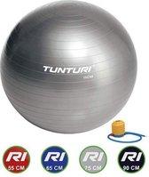 Tunturi Fitnessbal - Gymball - Swiss ball - 75 cm - Incl. pomp - Zilver
